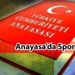 Türk Spor Teşkilatlanması